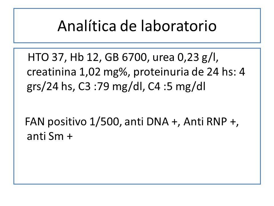 Analítica de laboratorio HTO 37, Hb 12, GB 6700, urea 0,23 g/l, creatinina 1,02 mg%, proteinuria de 24 hs: 4 grs/24 hs, C3 :79 mg/dl, C4 :5 mg/dl FAN