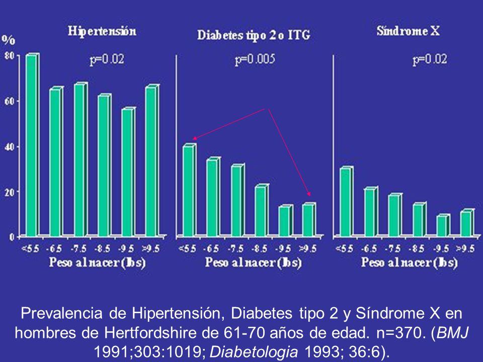 Prevalencia de Hipertensión, Diabetes tipo 2 y Síndrome X en hombres de Hertfordshire de 61-70 años de edad. n=370. (BMJ 1991;303:1019; Diabetologia 1