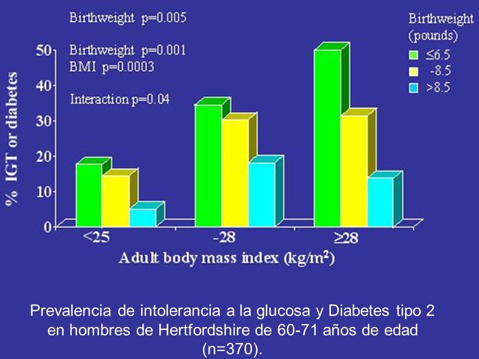 Prevalencia de intolerancia a la glucosa y Diabetes tipo 2 en hombres de Hertfordshire de 60-71 años de edad (n=370).
