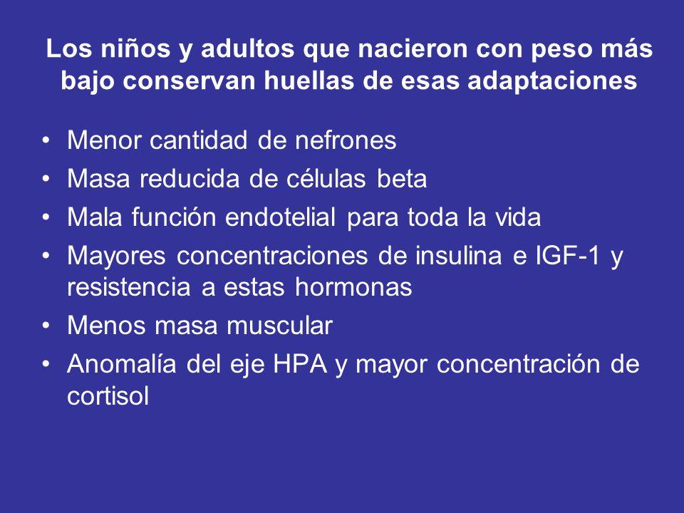 Los niños y adultos que nacieron con peso más bajo conservan huellas de esas adaptaciones Menor cantidad de nefrones Masa reducida de células beta Mala función endotelial para toda la vida Mayores concentraciones de insulina e IGF-1 y resistencia a estas hormonas Menos masa muscular Anomalía del eje HPA y mayor concentración de cortisol