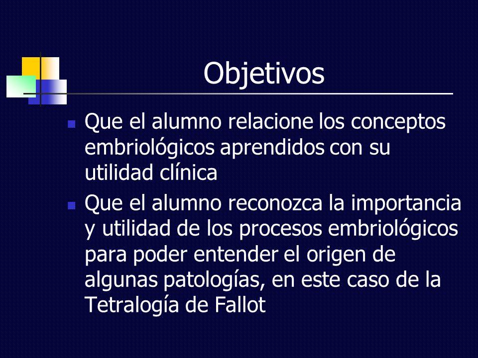 Objetivos Que el alumno relacione los conceptos embriológicos aprendidos con su utilidad clínica Que el alumno reconozca la importancia y utilidad de