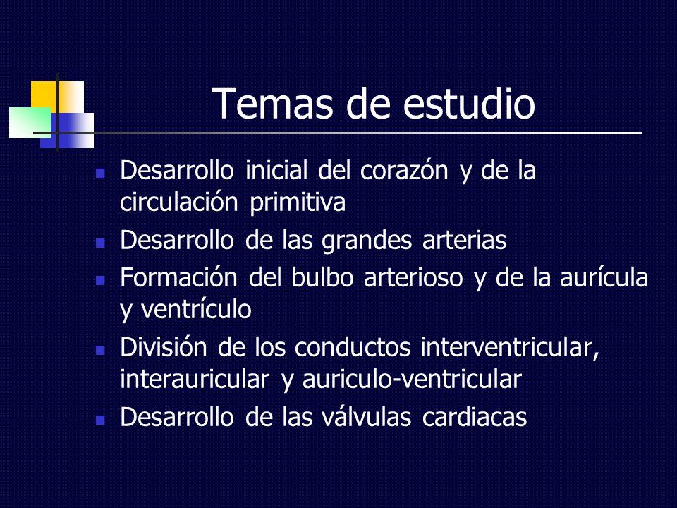 Temas de estudio Desarrollo inicial del corazón y de la circulación primitiva Desarrollo de las grandes arterias Formación del bulbo arterioso y de la