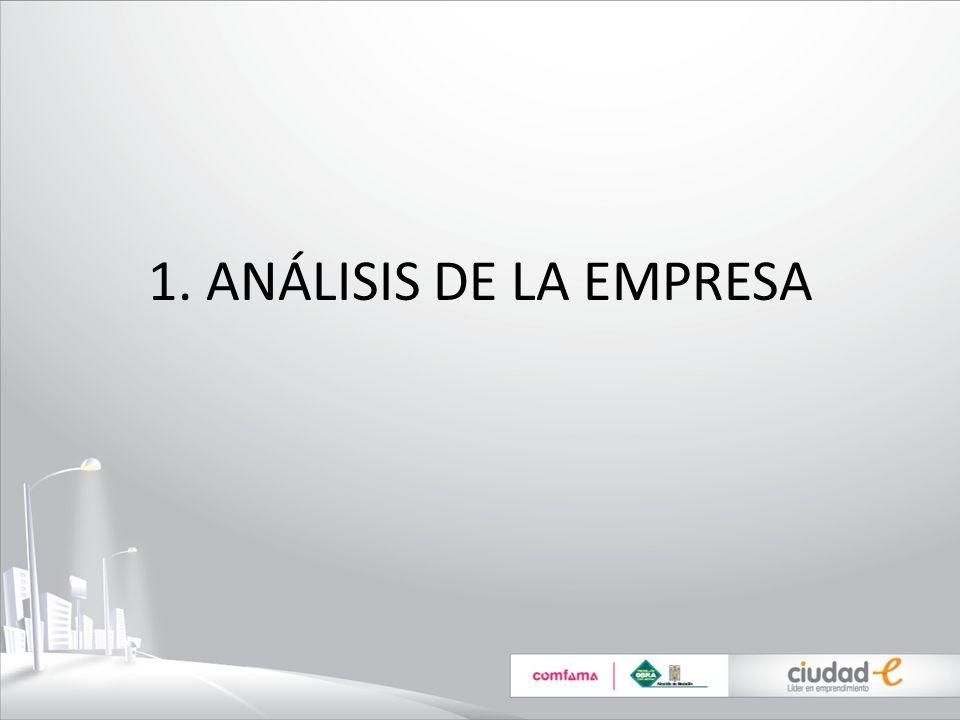 1. ANÁLISIS DE LA EMPRESA