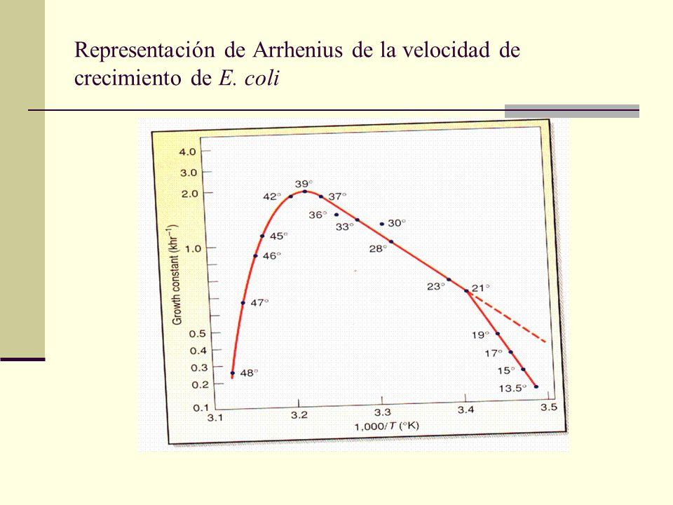 Representación de Arrhenius de la velocidad de crecimiento de E. coli