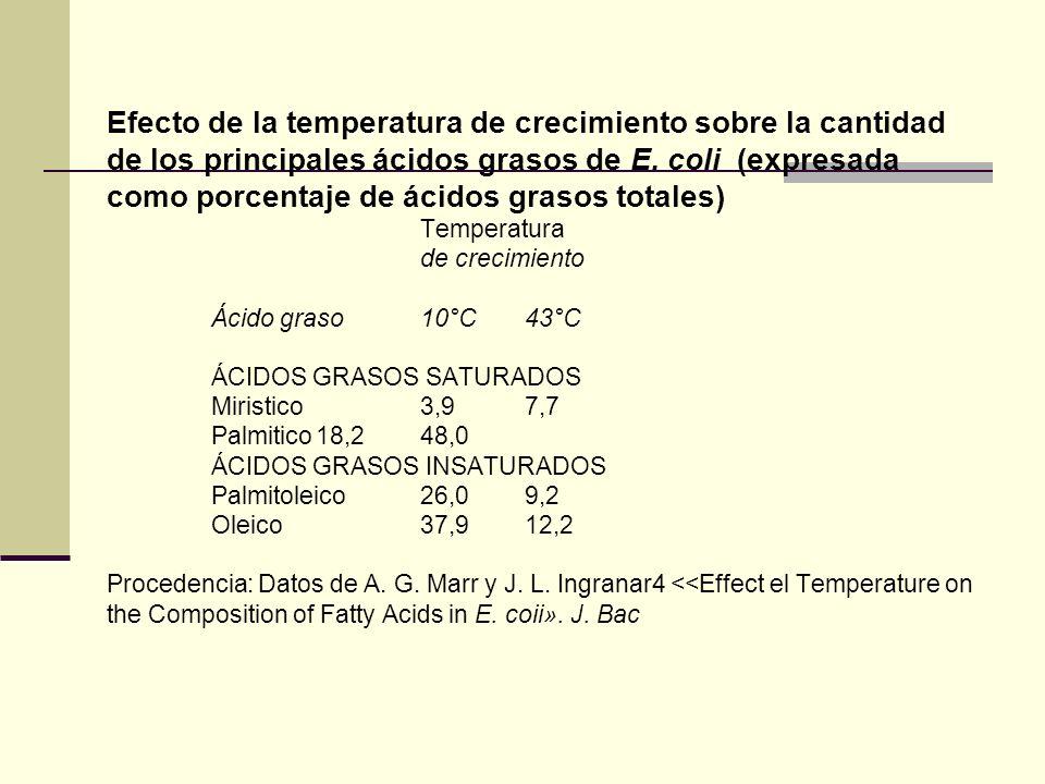 Efecto de la temperatura de crecimiento sobre la cantidad de los principales ácidos grasos de E. coli (expresada como porcentaje de ácidos grasos tota