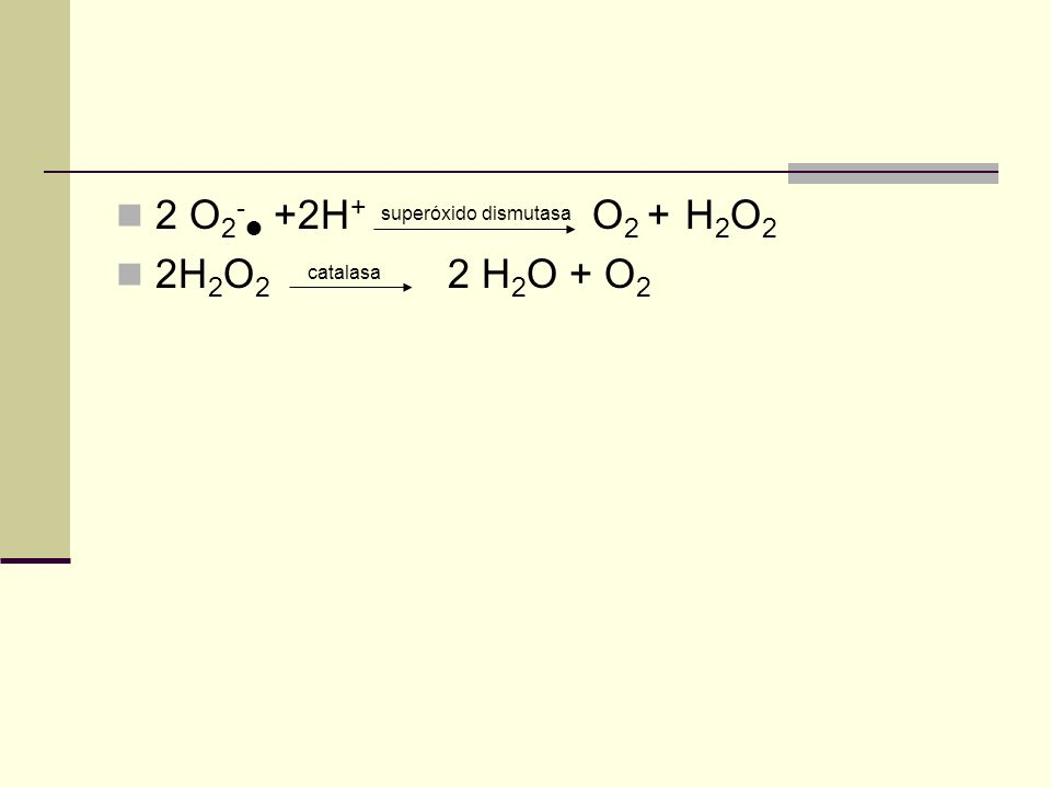 2 O 2 - +2H + superóxido dismutasa O 2 + H 2 O 2 2H 2 O 2 catalasa 2 H 2 O + O 2
