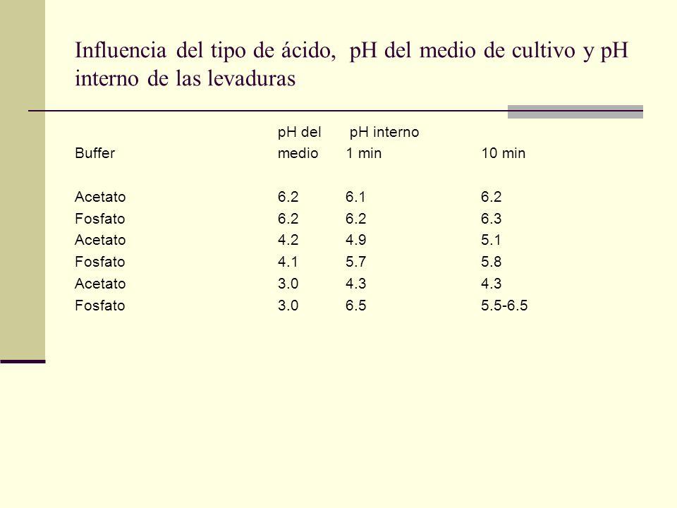 Influencia del tipo de ácido, pH del medio de cultivo y pH interno de las levaduras pH del pH interno Buffermedio1 min10 min Acetato6.26.16.2 Fosfato