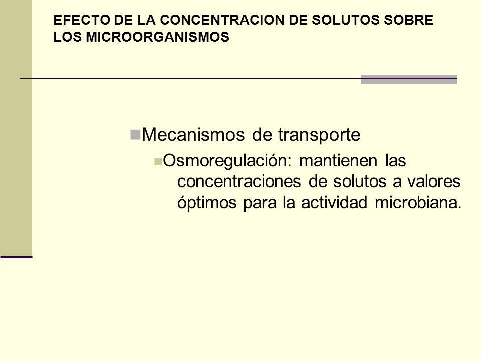 EFECTO DE LA CONCENTRACION DE SOLUTOS SOBRE LOS MICROORGANISMOS Mecanismos de transporte Osmoregulación: mantienen las concentraciones de solutos a va