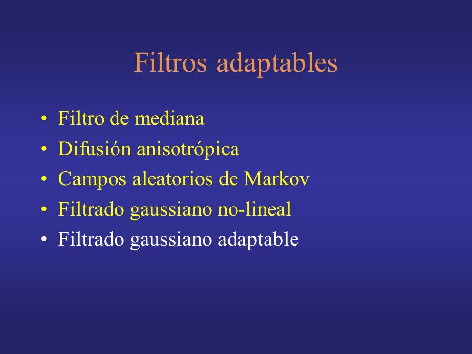 Filtros adaptables Filtro de mediana Difusión anisotrópica Campos aleatorios de Markov Filtrado gaussiano no-lineal Filtrado gaussiano adaptable