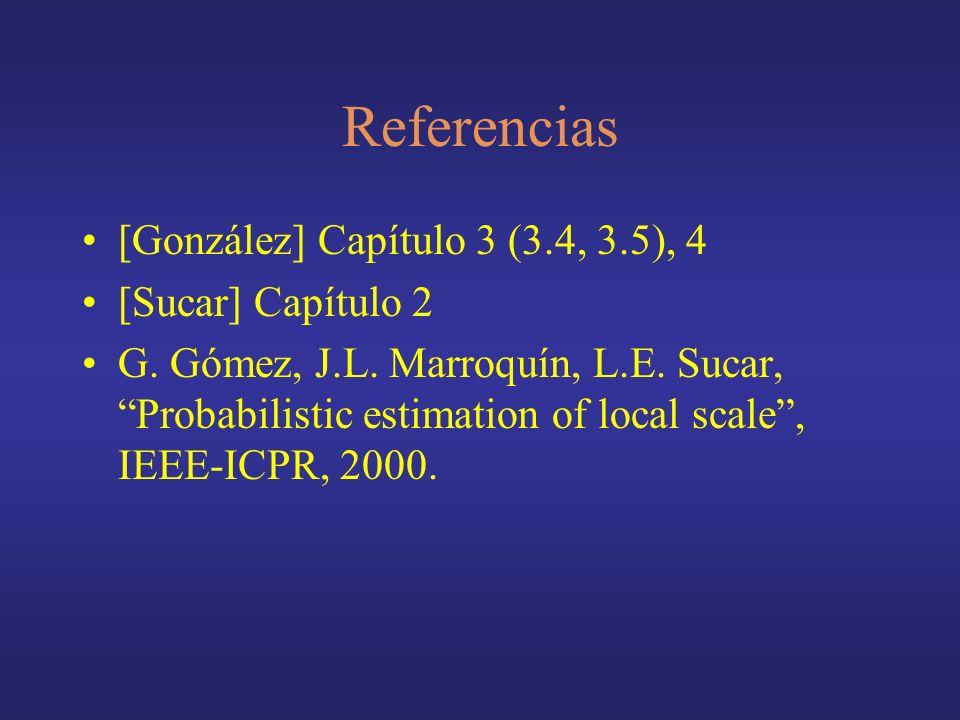 Referencias [González] Capítulo 3 (3.4, 3.5), 4 [Sucar] Capítulo 2 G. Gómez, J.L. Marroquín, L.E. Sucar, Probabilistic estimation of local scale, IEEE