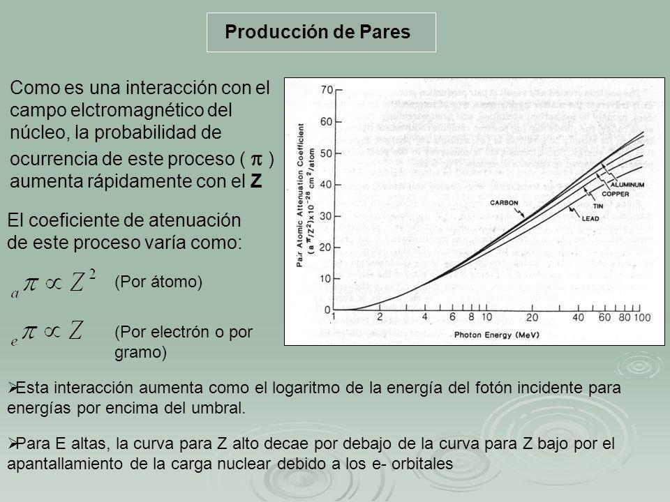 Producción de Pares Como es una interacción con el campo elctromagnético del núcleo, la probabilidad de ocurrencia de este proceso ( ) aumenta rápidam