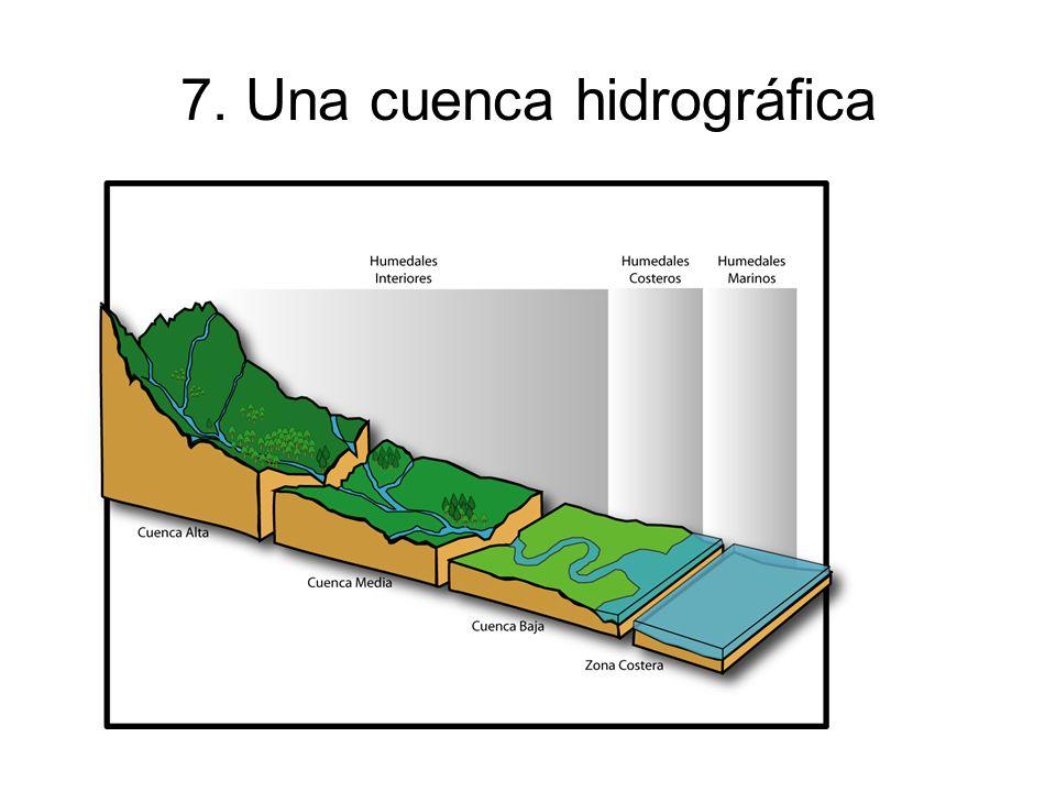 7. Una cuenca hidrográfica