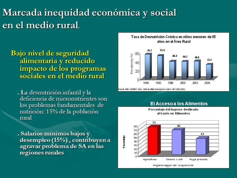 Bajo nivel de seguridad alimentaria y reducido impacto de los programas sociales en el medio rural.