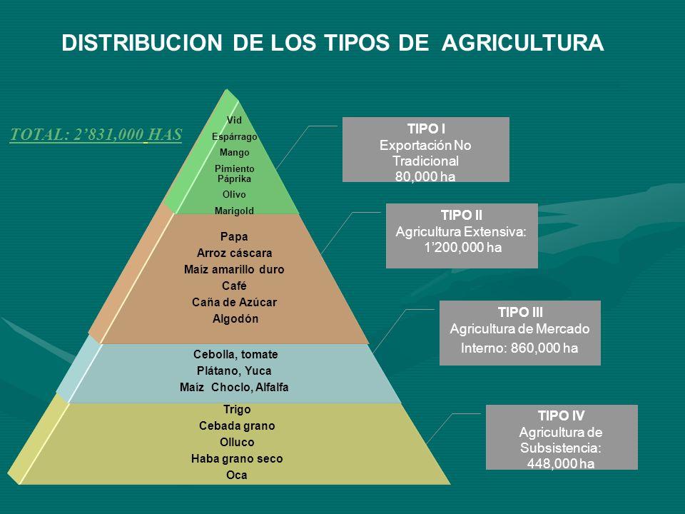 Bajo Nivel de Competitividad y rentabilidad agraria(1) -LIMITADO ACCESO A MERCADOS : -Vías de acceso inadecuadas -Alta Intermediación en los mercados -Sistemas de información deficientes -Baja capacidad de negociación de los pequeños productores