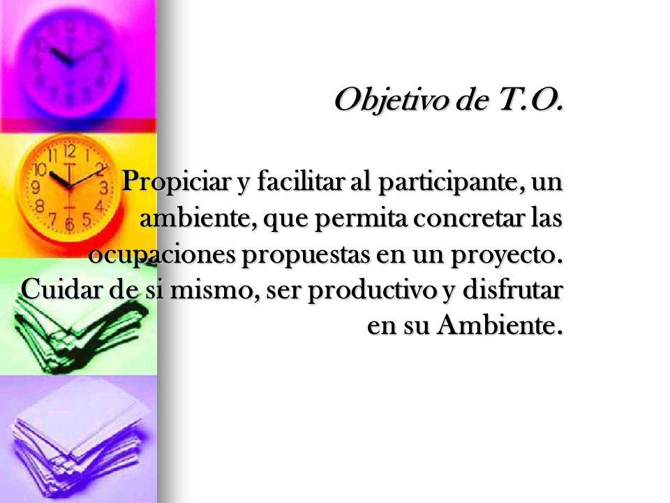 Objetivo de T.O. Propiciar y facilitar al participante, un ambiente, que permita concretar las ocupaciones propuestas en un proyecto. Cuidar de si mis