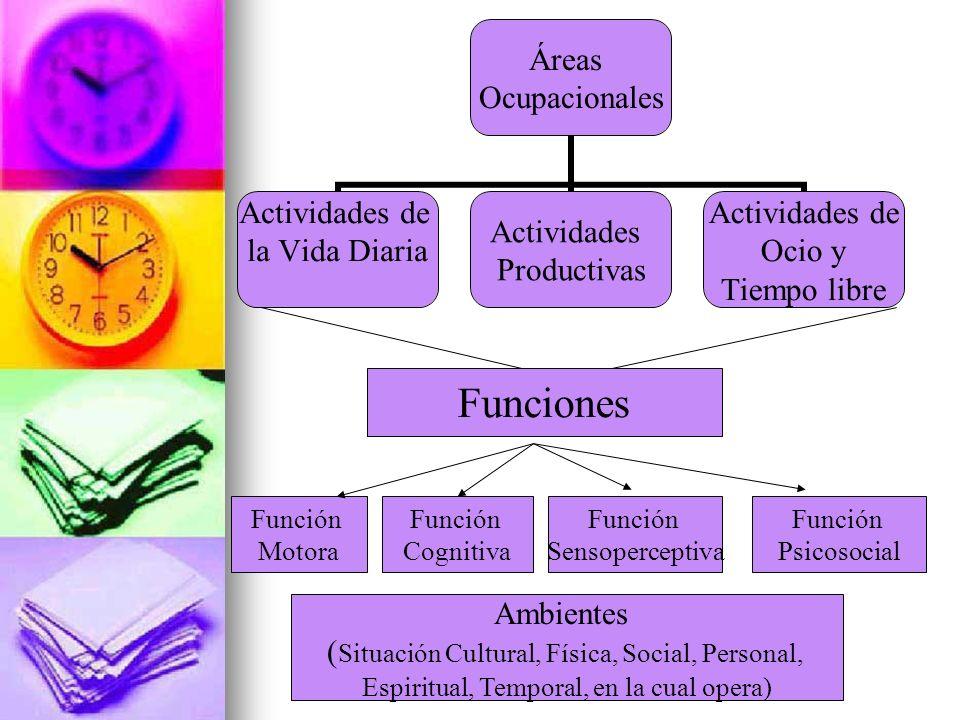 Áreas Ocupacionales Actividades de la Vida Diaria Actividades Productivas Actividades de Ocio y Tiempo libre Funciones Función Motora Función Cognitiv