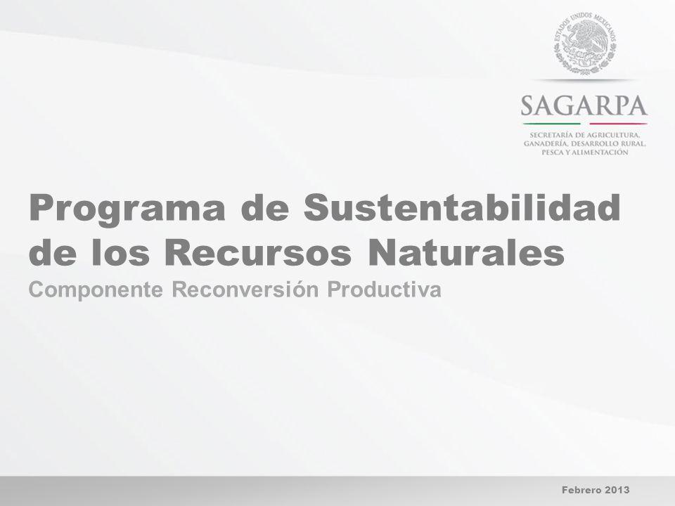 Programa de Sustentabilidad de los Recursos Naturales Componente Reconversión Productiva Febrero 2013