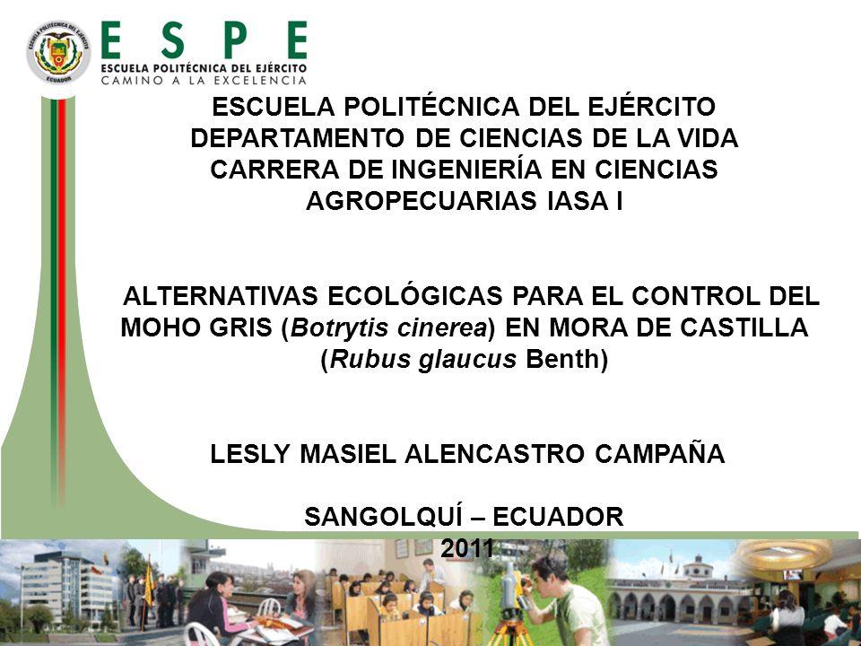 ESCUELA POLITÉCNICA DEL EJÉRCITO DEPARTAMENTO DE CIENCIAS DE LA VIDA CARRERA DE INGENIERÍA EN CIENCIAS AGROPECUARIAS IASA I ALTERNATIVAS ECOLÓGICAS PARA EL CONTROL DEL MOHO GRIS (Botrytis cinerea) EN MORA DE CASTILLA (Rubus glaucus Benth) LESLY MASIEL ALENCASTRO CAMPAÑA SANGOLQUÍ – ECUADOR 2011