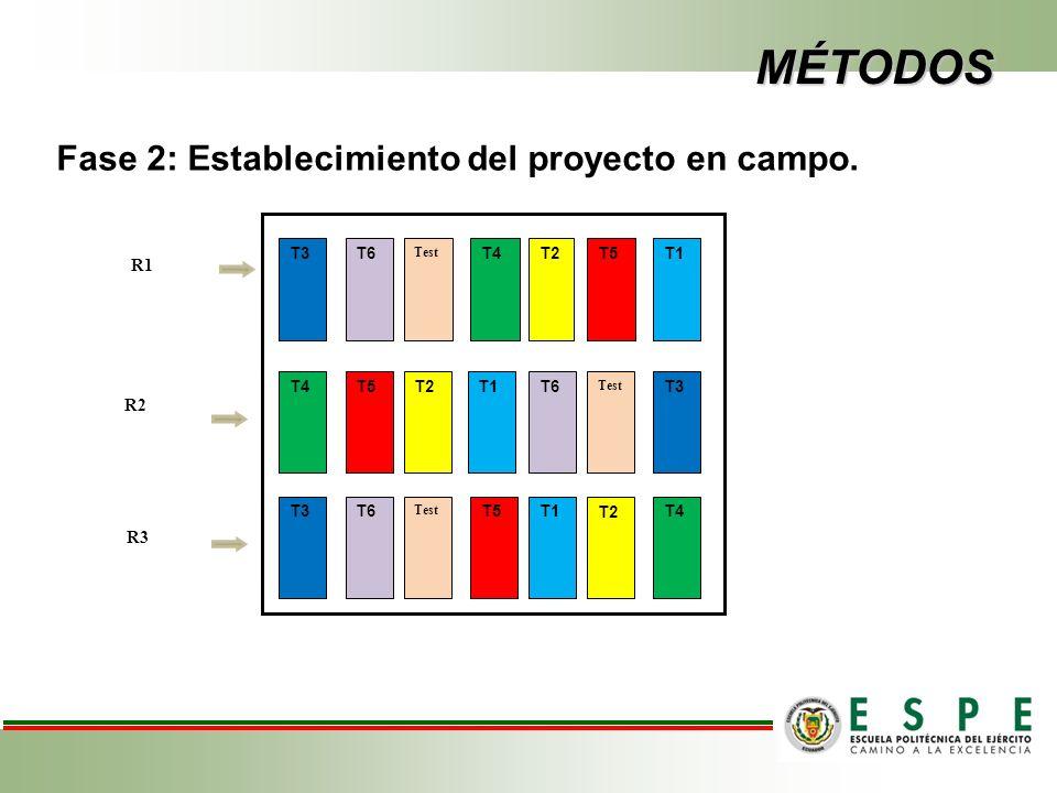MÉTODOS Fase 2: Establecimiento del proyecto en campo.