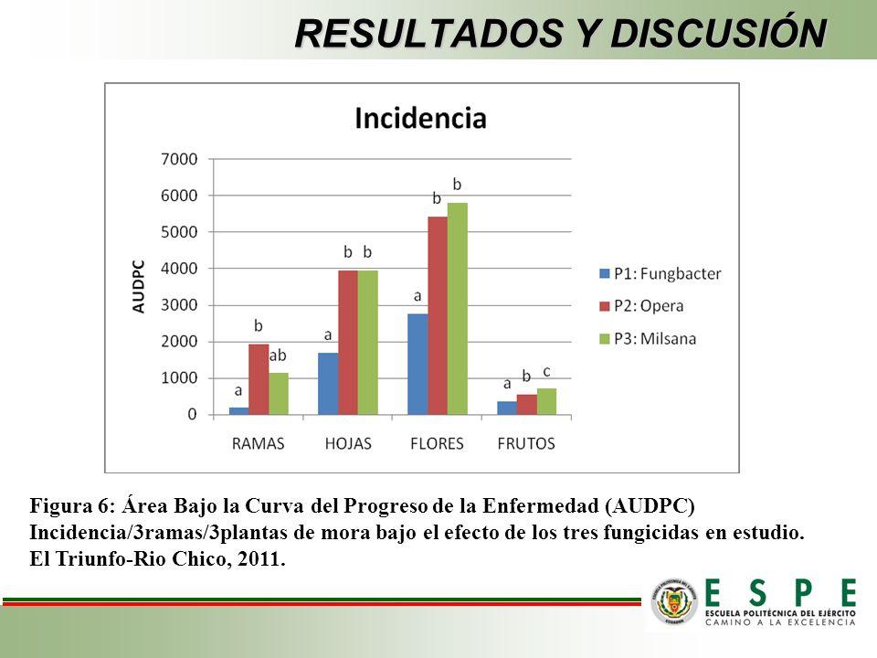 RESULTADOS Y DISCUSIÓN Figura 6: Área Bajo la Curva del Progreso de la Enfermedad (AUDPC) Incidencia/3ramas/3plantas de mora bajo el efecto de los tres fungicidas en estudio.