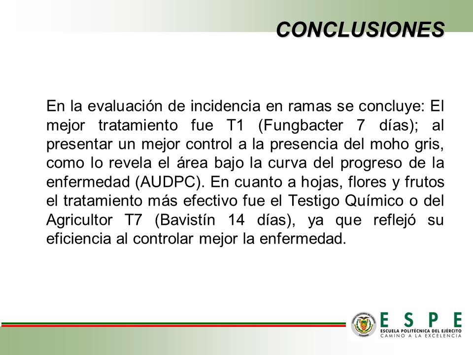 CONCLUSIONES En la evaluación de incidencia en ramas se concluye: El mejor tratamiento fue T1 (Fungbacter 7 días); al presentar un mejor control a la presencia del moho gris, como lo revela el área bajo la curva del progreso de la enfermedad (AUDPC).