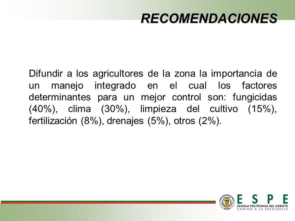 RECOMENDACIONES Difundir a los agricultores de la zona la importancia de un manejo integrado en el cual los factores determinantes para un mejor control son: fungicidas (40%), clima (30%), limpieza del cultivo (15%), fertilización (8%), drenajes (5%), otros (2%).