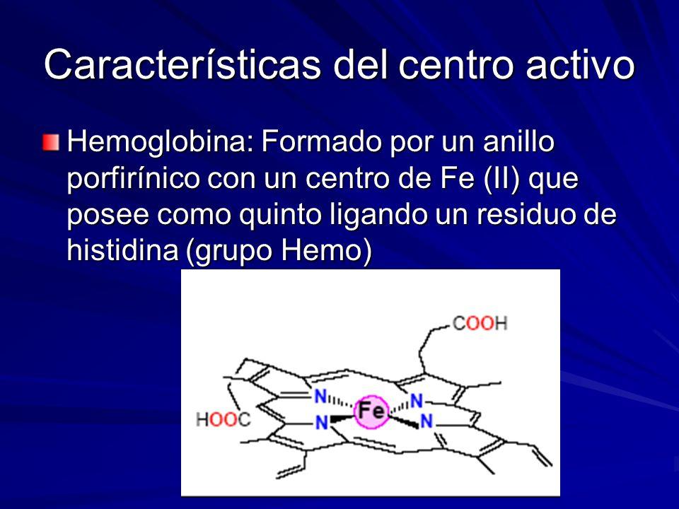 Hemoglobina: Formado por un anillo porfirínico con un centro de Fe (II) que posee como quinto ligando un residuo de histidina (grupo Hemo) Características del centro activo