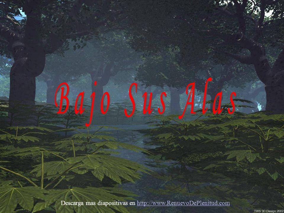 Descarga mas diapositivas en http://www.RenuevoDePlenitud.comhttp://www.RenuevoDePlenitud.com