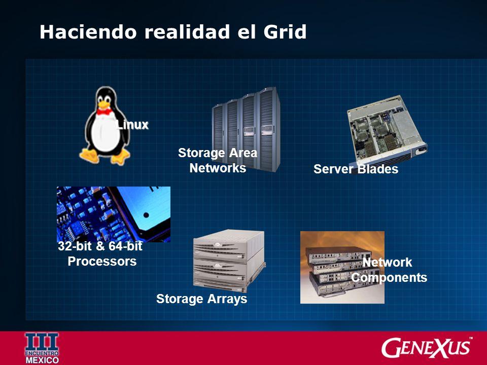 Haciendo realidad el Grid 32-bit & 64-bit Processors Storage Arrays Server Blades Network Components Linux Storage Area Networks