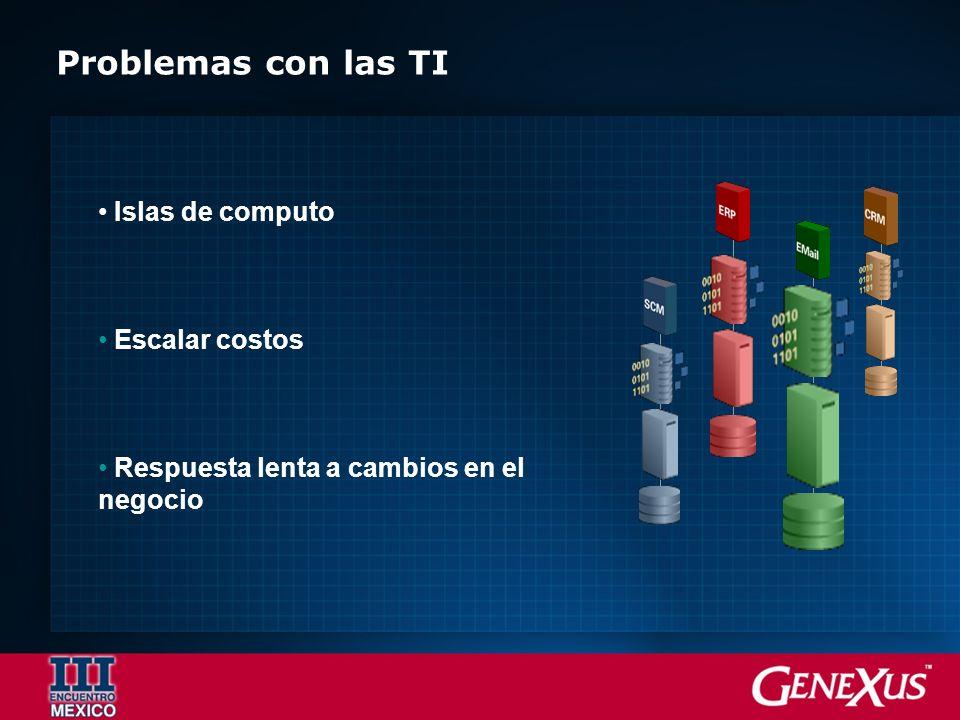 Islas de computo Escalar costos Respuesta lenta a cambios en el negocio Problemas con las TI