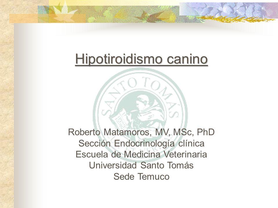 Estimulación con TRH – En animales con hipotiroidismo primario presenta niveles básales bajos de T4 y no existe o solo se presenta una mínima respuesta a la estimulación de TRH.