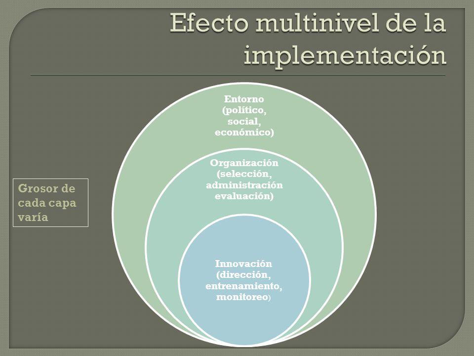 Entorno (político, social, económico) Organización (selección, administración evaluación) Innovación (dirección, entrenamiento, monitoreo ) Grosor de