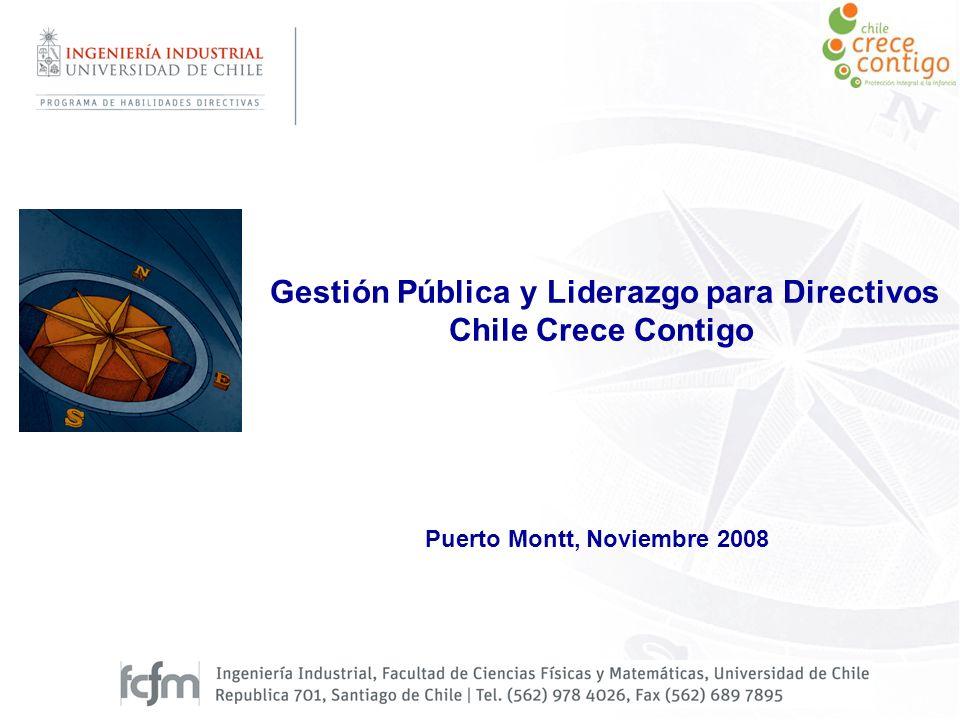 Puerto Montt, Noviembre 2008 Gestión Pública y Liderazgo para Directivos Chile Crece Contigo