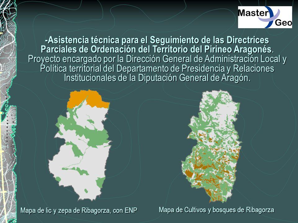 -Asistencia técnica para el Seguimiento de las Directrices Parciales de Ordenación del Territorio del Pirineo Aragonés. Proyecto encargado por la Dire