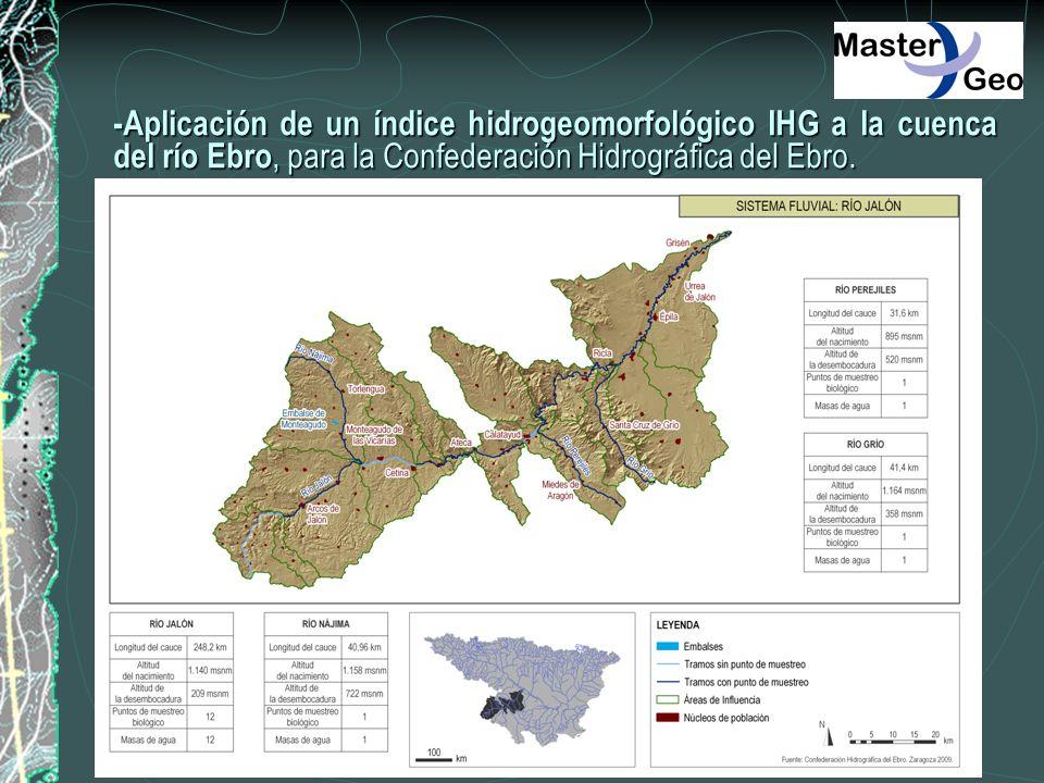-Aplicación de un índice hidrogeomorfológico IHG a la cuenca del río Ebro, para la Confederación Hidrográfica del Ebro.