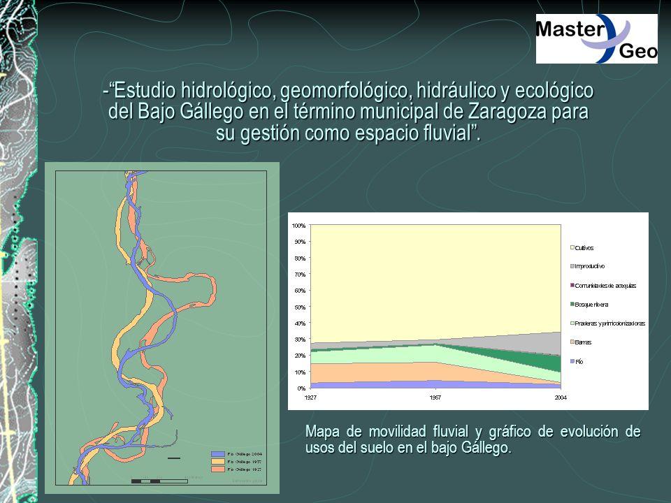 -Estudio hidrológico, geomorfológico, hidráulico y ecológico del Bajo Gállego en el término municipal de Zaragoza para su gestión como espacio fluvial