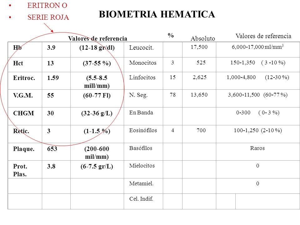 RELACION ENTRE HEMATOCRITO Y PROTEÍNAS PLASMÁTICAS HEMATOCRITOPROTEÍNAS PLASMÁTICAS INTERPRETACION Alto Deshidratación Normal Contracción esplénica (caballos), policitemia primaria o secundaria, deshidratación enmascarada por hipoproteinemia.