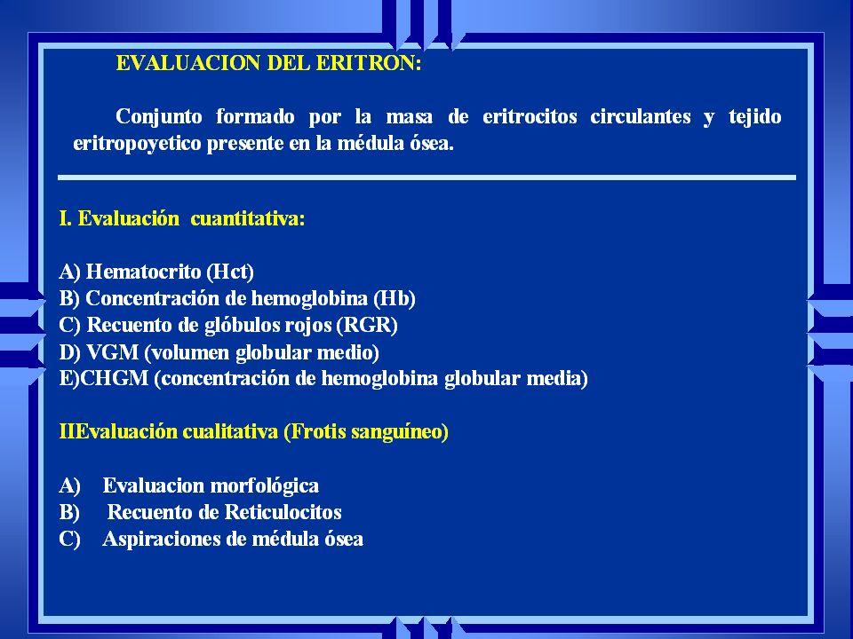 Puntilleo basofílico Cuerpo Howell Jolly Metarubricito Reticulocitos Poiquilocitosis Hipocromasia Anisocitosis