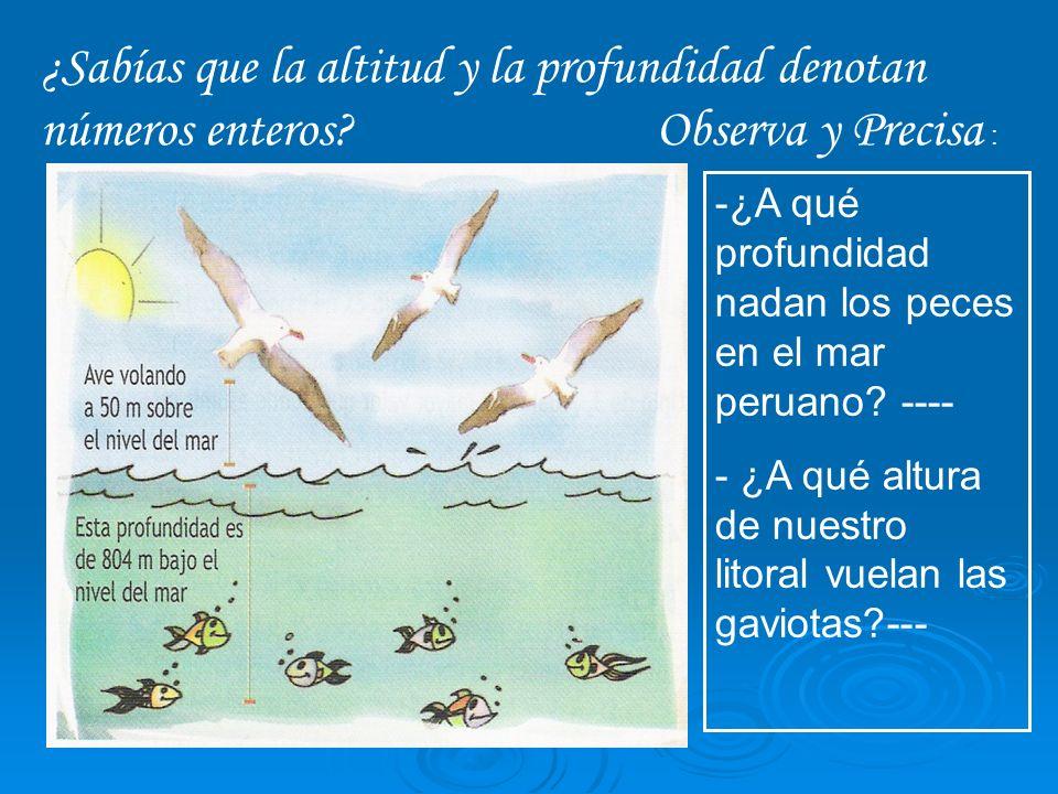 -¿A qué profundidad nadan los peces en el mar peruano? ---- - ¿A qué altura de nuestro litoral vuelan las gaviotas?--- ¿Sabías que la altitud y la pro