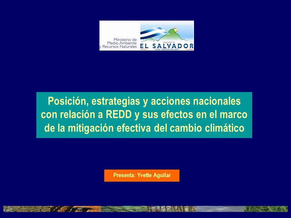 Posición, estrategias y acciones nacionales con relación a REDD y sus efectos en el marco de la mitigación efectiva del cambio climático Presenta: Yve