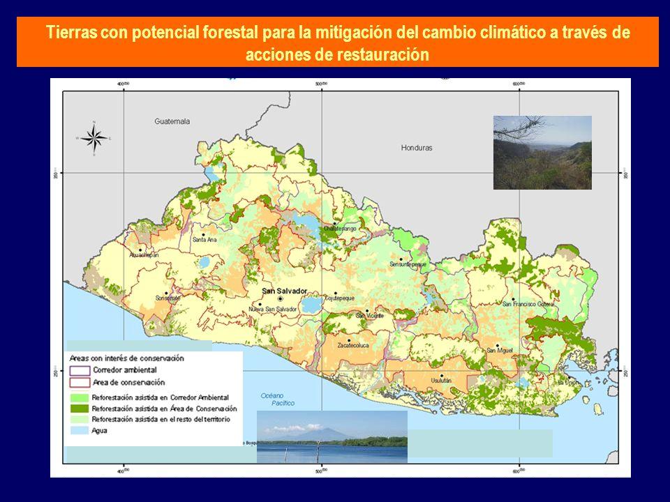 Tierras con potencial forestal para la mitigación del cambio climático a través de acciones de restauración