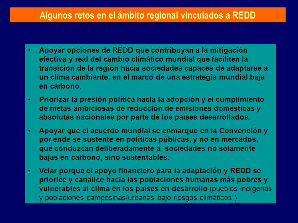 Algunos retos en el ámbito regional vinculados a REDD Apoyar opciones de REDD que contribuyan a la mitigación efectiva y real del cambio climático mun