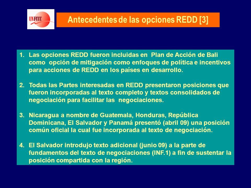 Antecedentes de las opciones REDD [3] 1.Las opciones REDD fueron incluidas en Plan de Acción de Bali como opción de mitigación como enfoques de políti