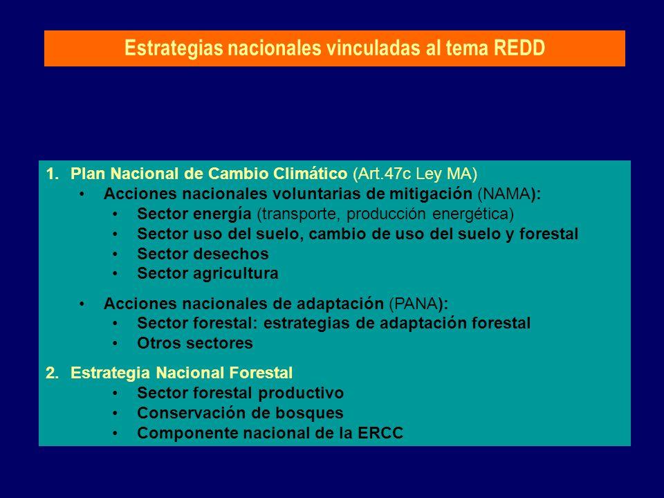 Estrategias nacionales vinculadas al tema REDD 1.Plan Nacional de Cambio Climático (Art.47c Ley MA) Acciones nacionales voluntarias de mitigación (NAM