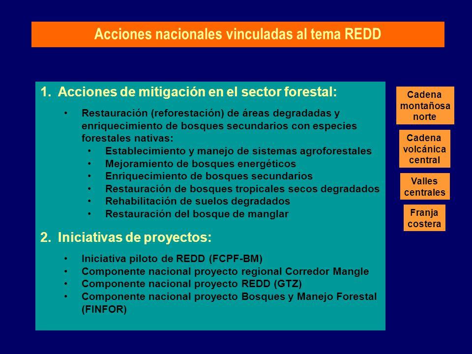 1.Acciones de mitigación en el sector forestal: Restauración (reforestación) de áreas degradadas y enriquecimiento de bosques secundarios con especies