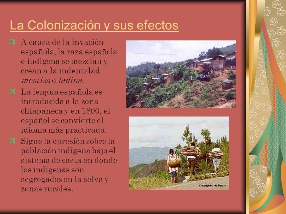 La Colonización y sus efectos A causa de la invación española, la raza española e indígena se mezclan y crean a la indentidad mestiza o ladina.