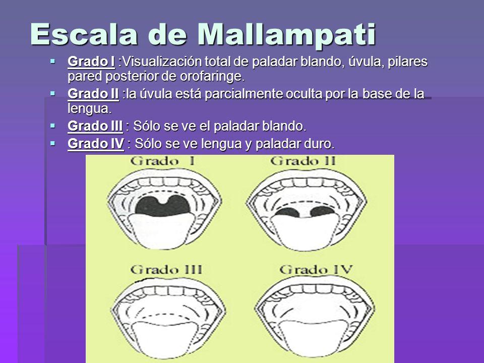 Escala de Mallampati Grado I :Visualización total de paladar blando, úvula, pilares pared posterior de orofaringe. Grado I :Visualización total de pal