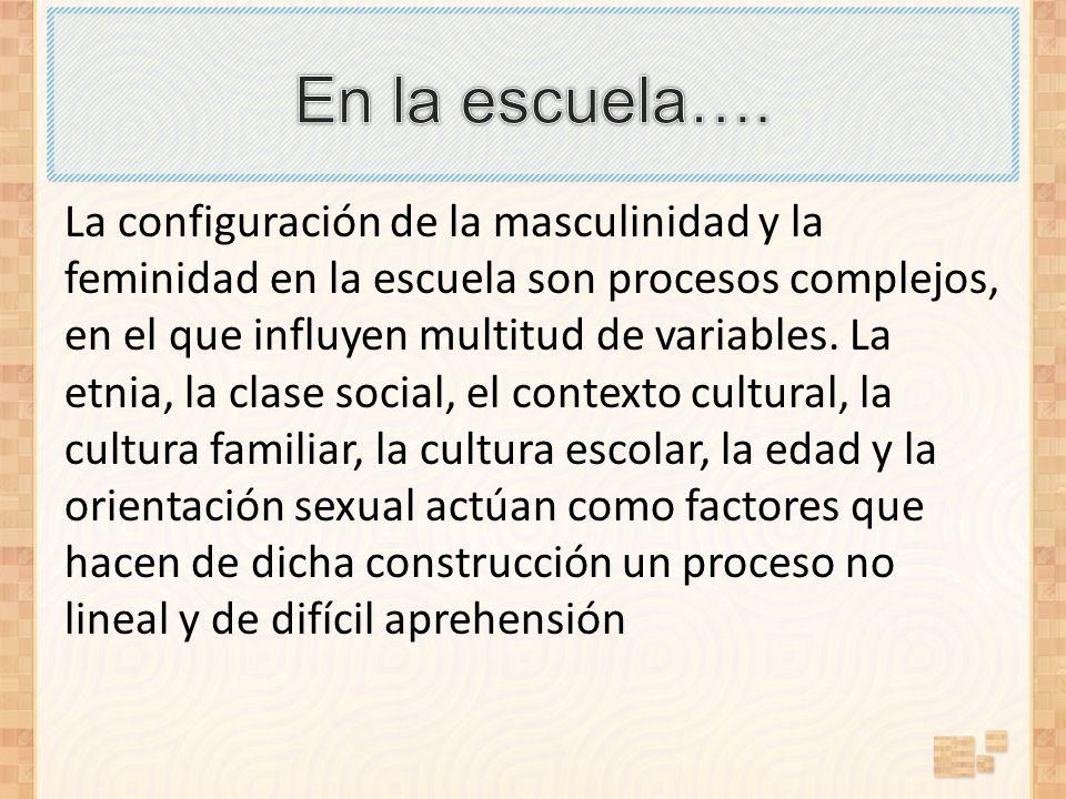 La configuración de la masculinidad y la feminidad en la escuela son procesos complejos, en el que influyen multitud de variables. La etnia, la clase