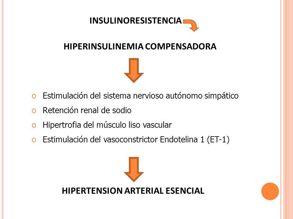 INSULINORESISTENCIA HIPERINSULINEMIA COMPENSADORA oEstimulación del sistema nervioso autónomo simpático oRetención renal de sodio oHipertrofia del mús