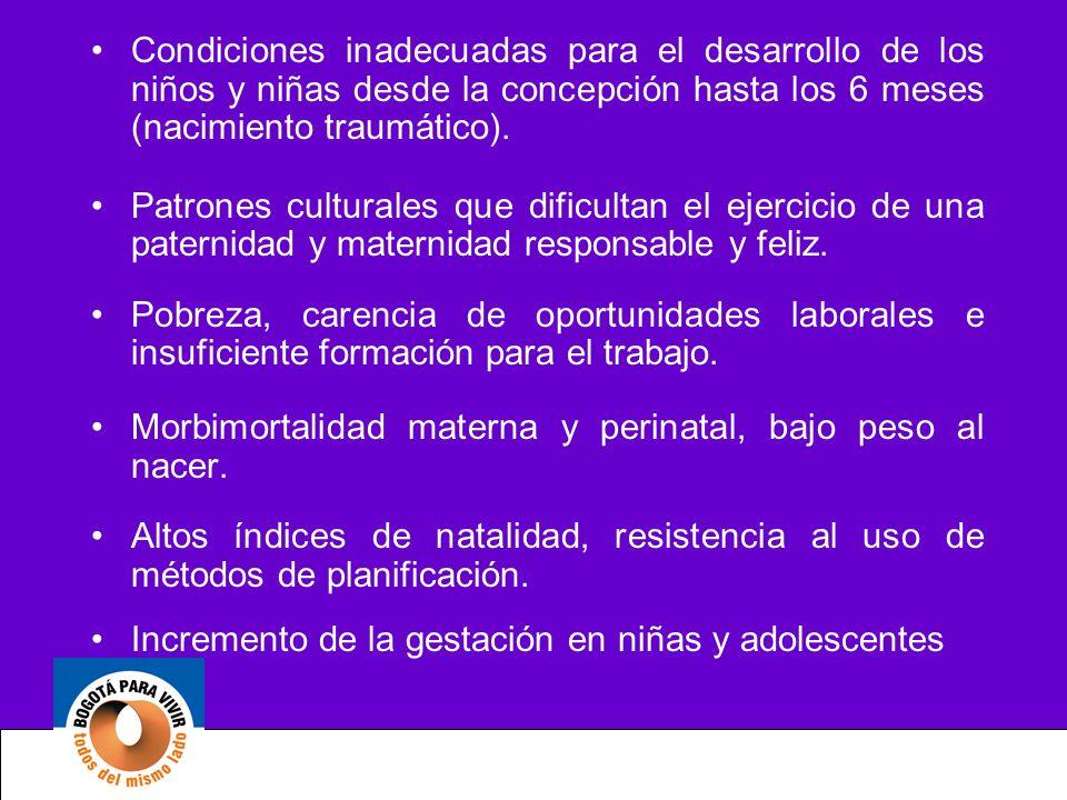 Condiciones inadecuadas para el desarrollo de los niños y niñas desde la concepción hasta los 6 meses (nacimiento traumático). Patrones culturales que